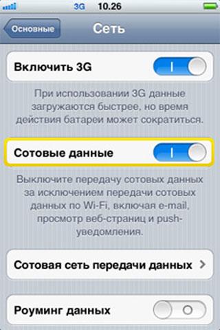 Как отключить 3G, мобильный интернет и роуминг данных в iPhone - инструкция